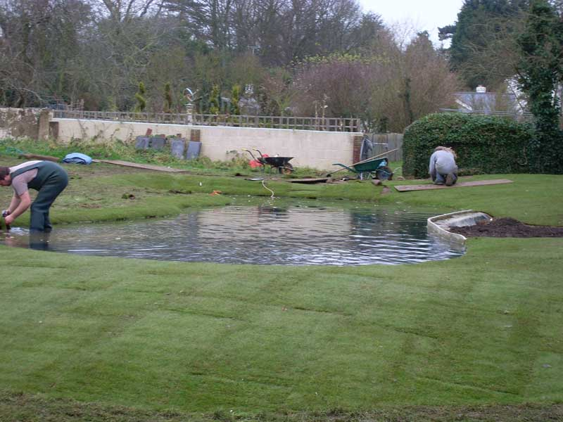 Pond construction cost 28 images 30 000 gal pond for Koi farm melbourne